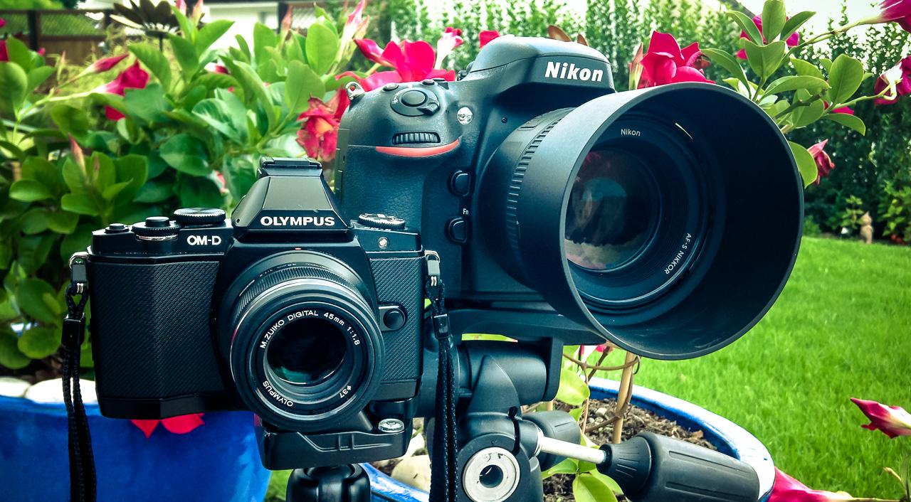Nikon D800 vs. Olympus OM-D E-M5 – Umfangreicher Praxisvergleich ...